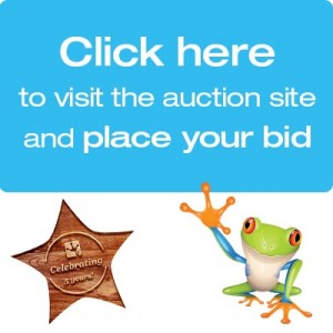 5 Star Charity Auction Button